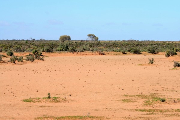 The denuded landscape at Walpolla Creek, far northwestern Victoria