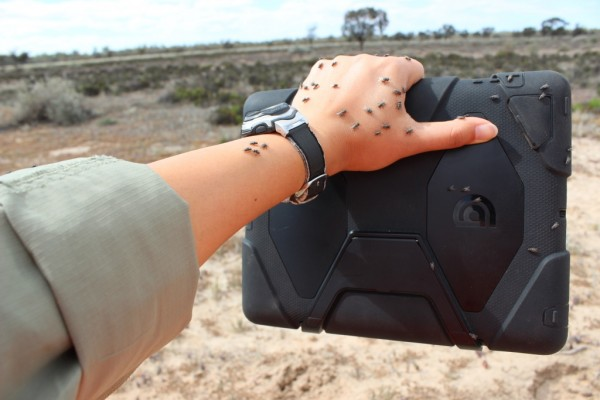Our robust iPad case withstanding field conditions (ie flies) in north-western Victoria